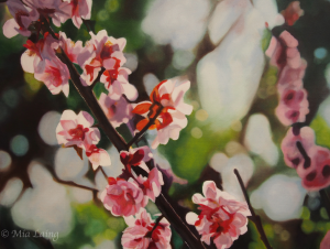 'Spring Blossom' Oil on Canvas - 2013 30x24